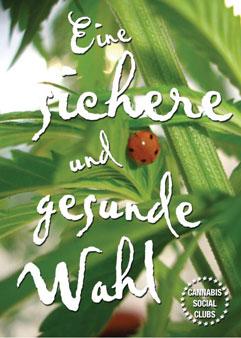 Flyer für Cannabis Social Clubs mit Motiv Marienkäfer